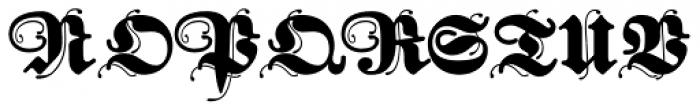 FatFritz Font UPPERCASE