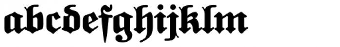 FatFritzPlus Font LOWERCASE