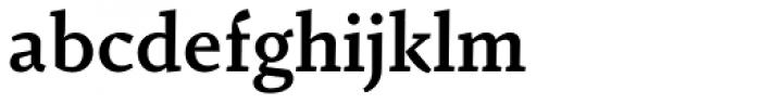 Fazeta Caption Bold Font LOWERCASE
