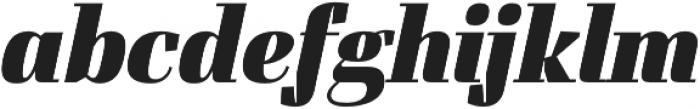 FelisOblique otf (900) Font LOWERCASE