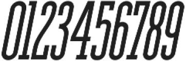 Ferguson Condensed Italic otf (400) Font OTHER CHARS
