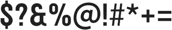 Festivo Clean Basic otf (400) Font OTHER CHARS