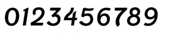 Fenwick Regular Italic Font OTHER CHARS