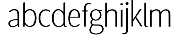 Fervour Sans Typeface  Web Fonts with 3 Weights 1 Font LOWERCASE