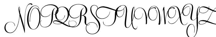 Feel Script Regular Font UPPERCASE