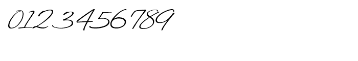 Felicity Script Font OTHER CHARS