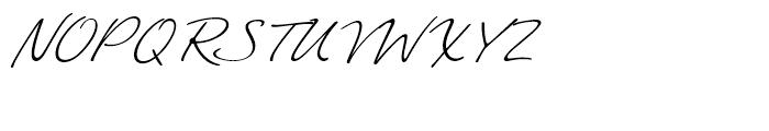 Felicity Script Font UPPERCASE