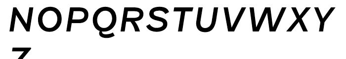 Fenwick Italic Font UPPERCASE