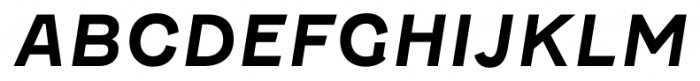 Fenwick Bold Italic Font UPPERCASE