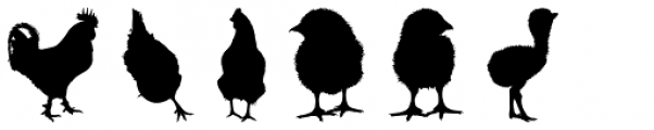 Feathery Font LOWERCASE