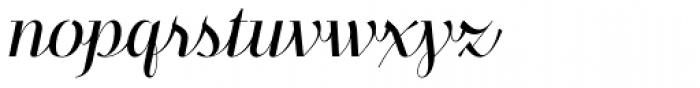 Felis Script Light Font LOWERCASE