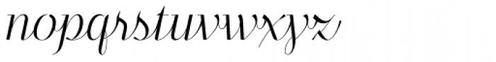 Felis Script Thin Font LOWERCASE