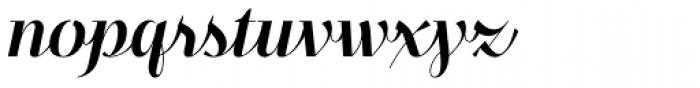 Felis Script Font LOWERCASE