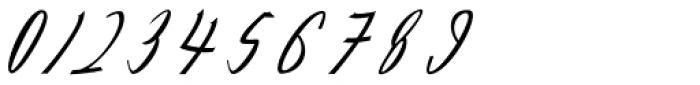 Feraldine Script Regular Font OTHER CHARS