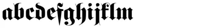 Fette Fraktur Initials D Font LOWERCASE