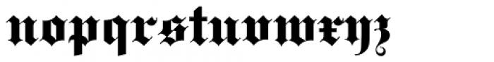 Fette Gotisch Pro Regular Font LOWERCASE