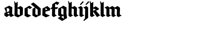 FF Brokenscript Condensed Bold Font LOWERCASE