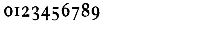 FF Brokenscript Rough Condensed Bold Font OTHER CHARS