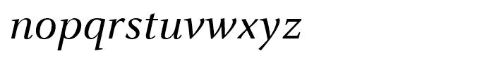 FF Celeste Book Italic Font LOWERCASE