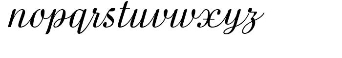 FF Danubia Script Regular Font LOWERCASE