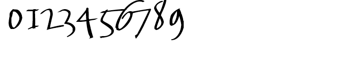 FF FancyWriting Median Font OTHER CHARS