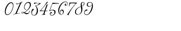 FF Fontesque Regular Italic Font OTHER CHARS