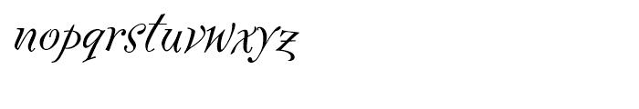 FF Fontesque Regular Italic Font LOWERCASE