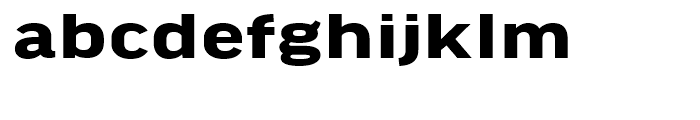 FF Good Headline Extended Bold Font LOWERCASE