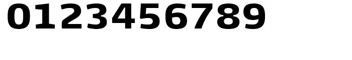 FF Max Demi Serif Black Font OTHER CHARS