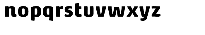 FF Max Demi Serif Black Font LOWERCASE
