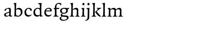 FF Quadraat Regular Font LOWERCASE