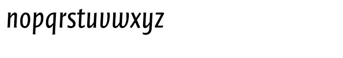 FF Quadraat Sans Condensed Regular Italic Font LOWERCASE