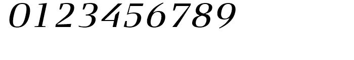 FF Signa Serif Book Italic Font OTHER CHARS
