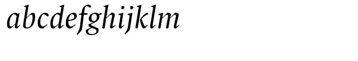 FF Spinoza Regular Italic Font LOWERCASE