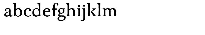 FF Tibere Medium Font LOWERCASE