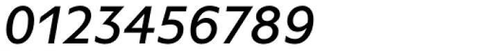 FF Basic Gothic OT Medium Italic Font OTHER CHARS
