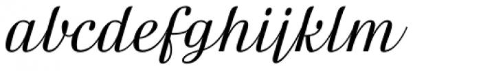 FF Danubia Script OT Font LOWERCASE