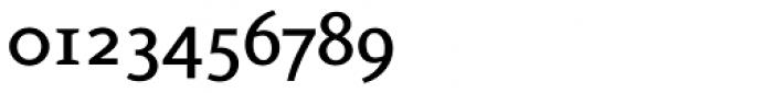 FF Eureka Pro Medium Font OTHER CHARS