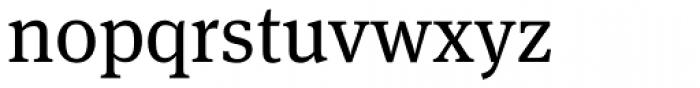 FF Meta Serif OT Book Font LOWERCASE