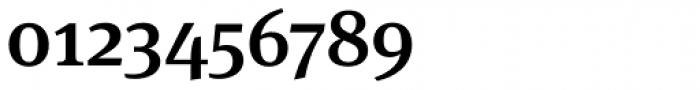 FF Meta Serif OT Medium Font OTHER CHARS