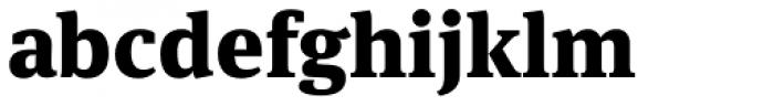FF Meta Serif Pro Black Font LOWERCASE