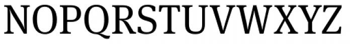 FF Meta Serif Pro Book Font UPPERCASE