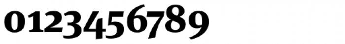 FF Meta Serif Pro ExtraBold Font OTHER CHARS