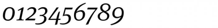 FF Meta Serif Pro Light Italic Font OTHER CHARS