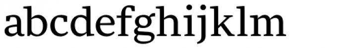 FF More OT Wide Book Font LOWERCASE