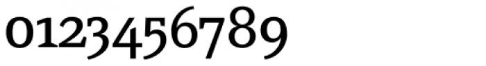 FF Page Serif OT Font OTHER CHARS