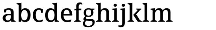 FF Page Serif OT Font LOWERCASE