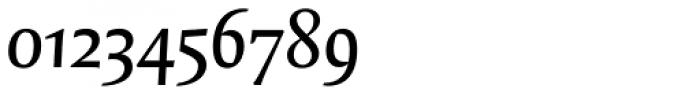 FF Quadraat OT DemiBold Italic Font OTHER CHARS