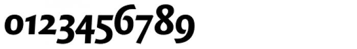 FF Quadraat Sans OT Black Italic Font OTHER CHARS