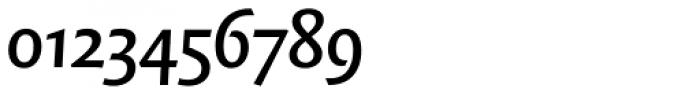 FF Quadraat Sans OT DemiBold Italic Font OTHER CHARS